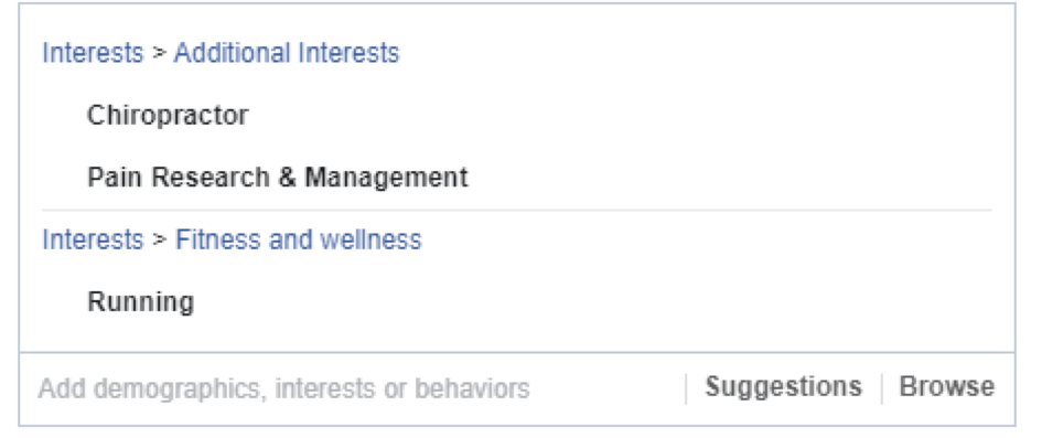 What an audience for Facebook Ads for Chiropractors could look like