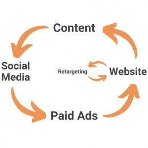 Social Media Ecosystem for Dentists