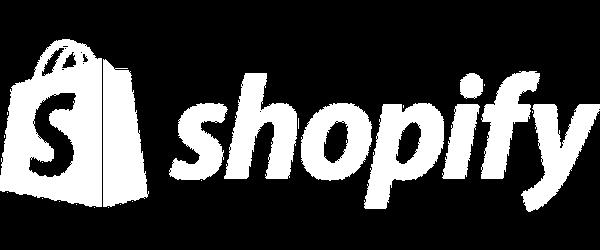 Shopify Optimization